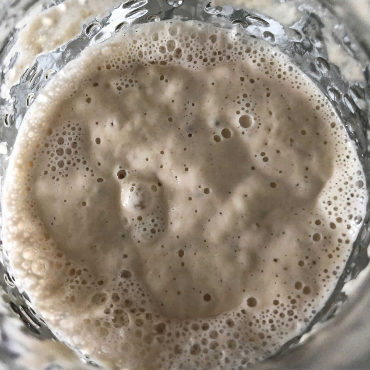 How to prepare sourdough starter for baking