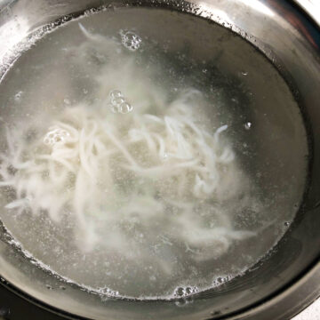 Thai Fermented Rice Noodles